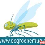 Wie wint de Groene Mug Bokaal 2016?