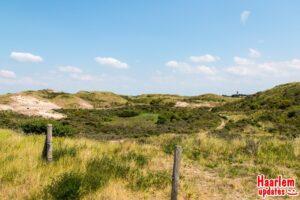 stock duinen Zandvoort