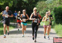 Letterenloop 10 km in 53.33 minuten 14062014. Foto: Sportssupport.