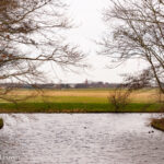 Volg een cursus en help de weidevogels in Kennemerland