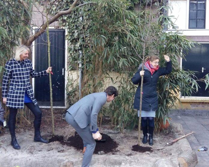 Wethouder Snoek plant appelboom bij Bavoschool. PR foto Wonderland Kinderopvang.