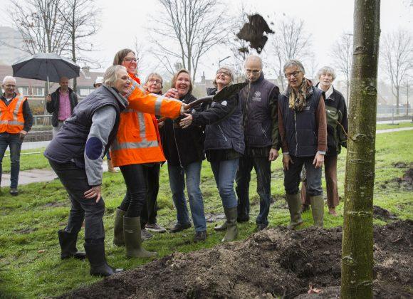 Vrijwilligers Romolen Heempark helpen wethouder Sikkema bij verplanten boom Europaweg. Fotografie: Jurriaan Hoefsmit.