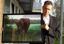 Peter Hulscher met zijn foto van een Schotse hooglander.